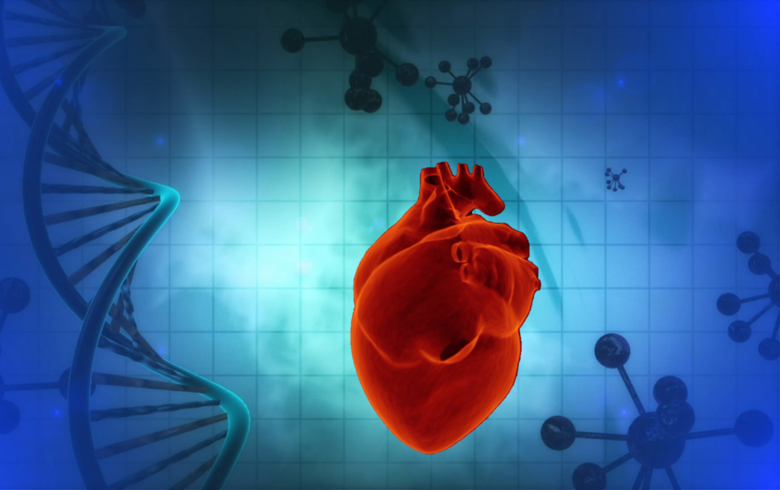 Picture of DNA helix and heart